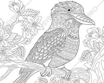 Owl Adult Coloring Book Page. Zentangle Doodle Coloring Pages