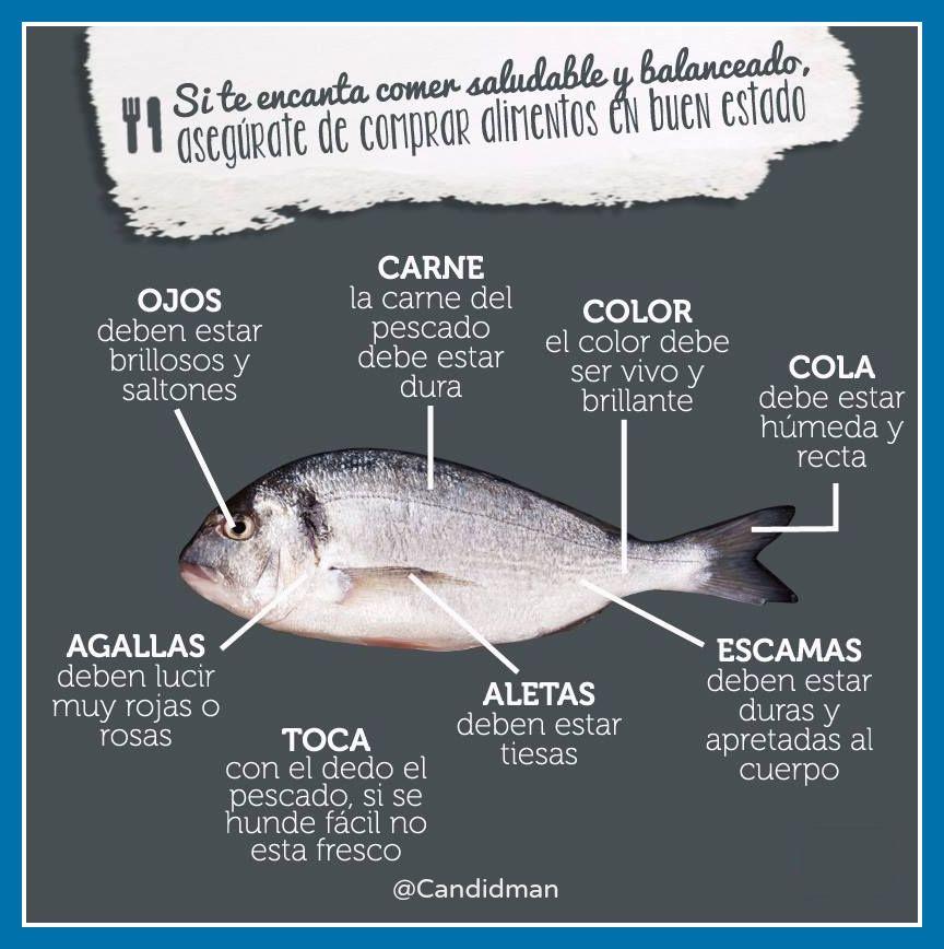 Infografia Consejos Para Comprobar La Frescura Del Pescado