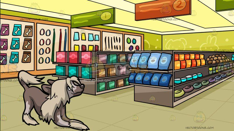 An Excited Chinese Crested Dog With Inside A Pet Store Background