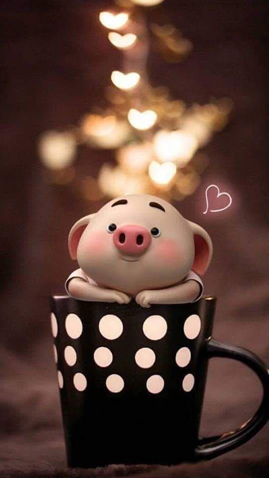 Guten Morgengruß | Niedliche ferkel, Niedliche schweine