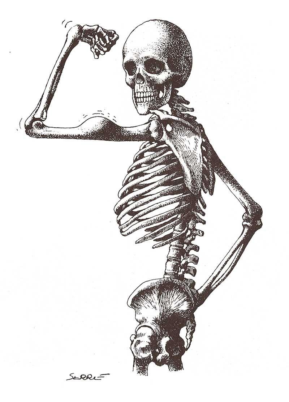 Скелет человека картинки веселые смеха, английские
