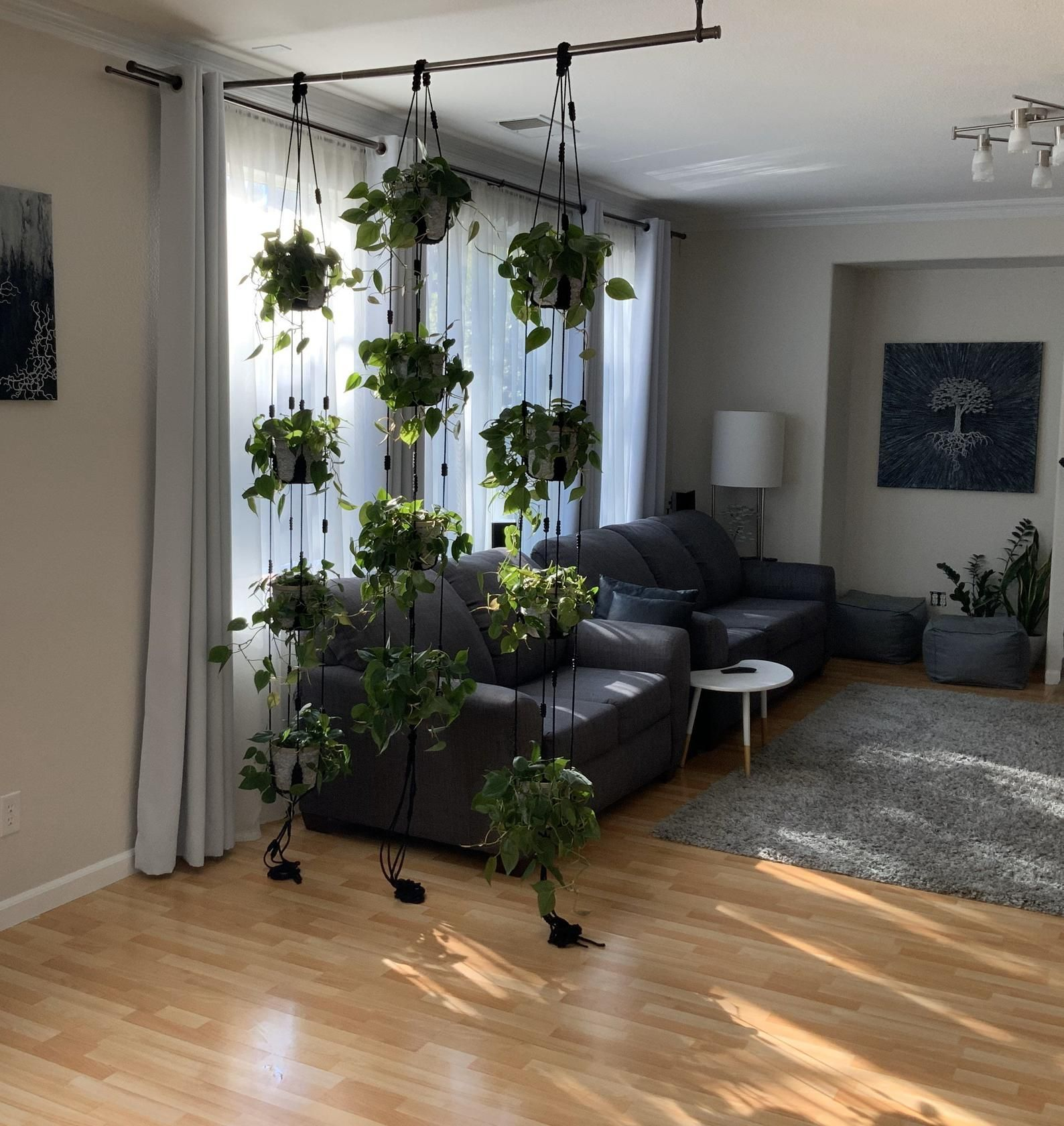 Adjustable plant hanger, multiple plants display, room