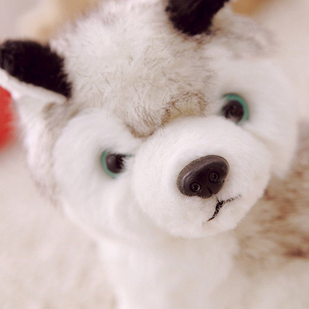Jili Online 20cm Huskie Puppy Dog Soft Plush Toy Stuffed Animals Home Decoration Ornaments Click Photo To Assess E Pet Toys Kids Toy Gifts Dogs And Puppies
