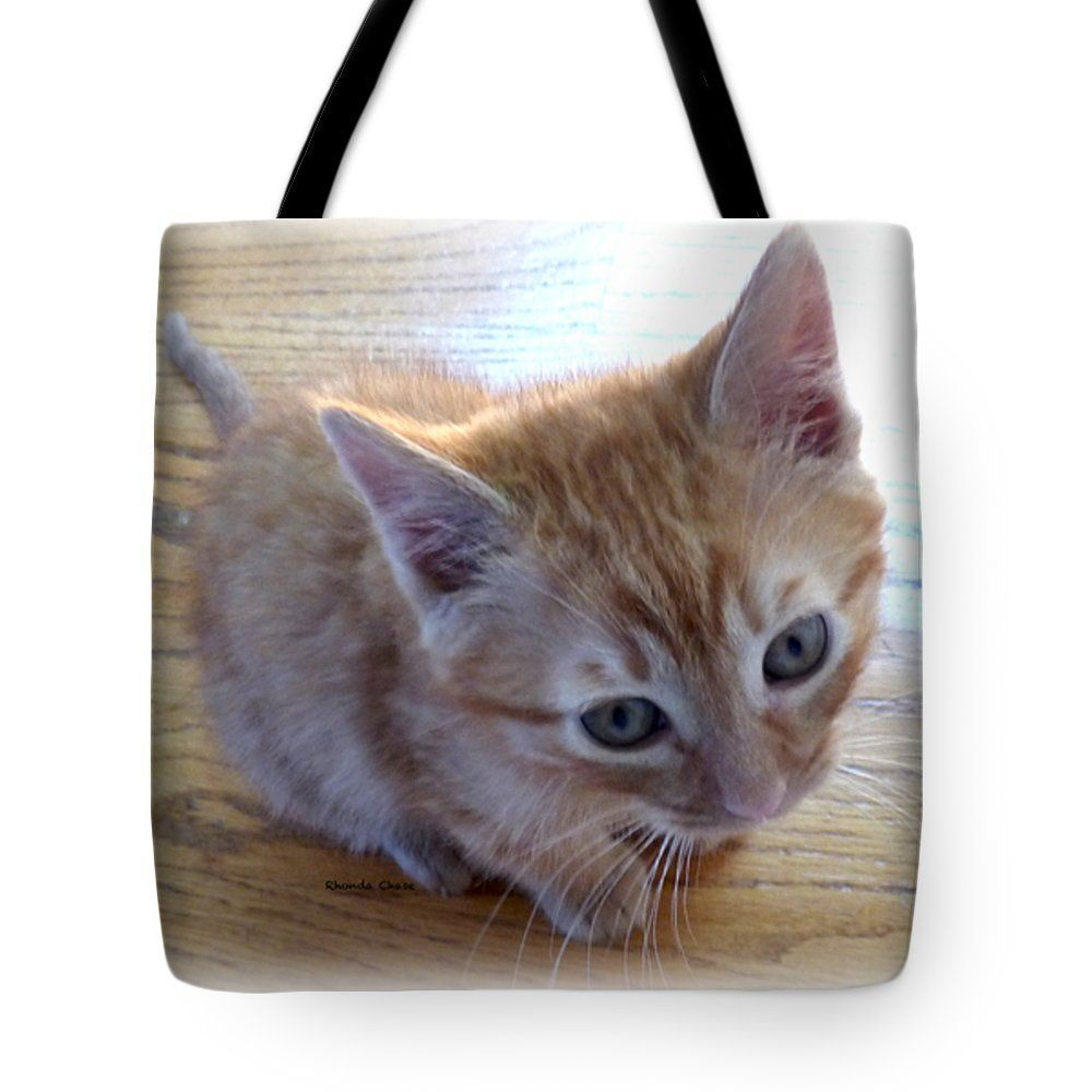 Kitten Tote Bag For Sale By Rhonda Chase In 2020 Bag Sale Tote Bag Bags