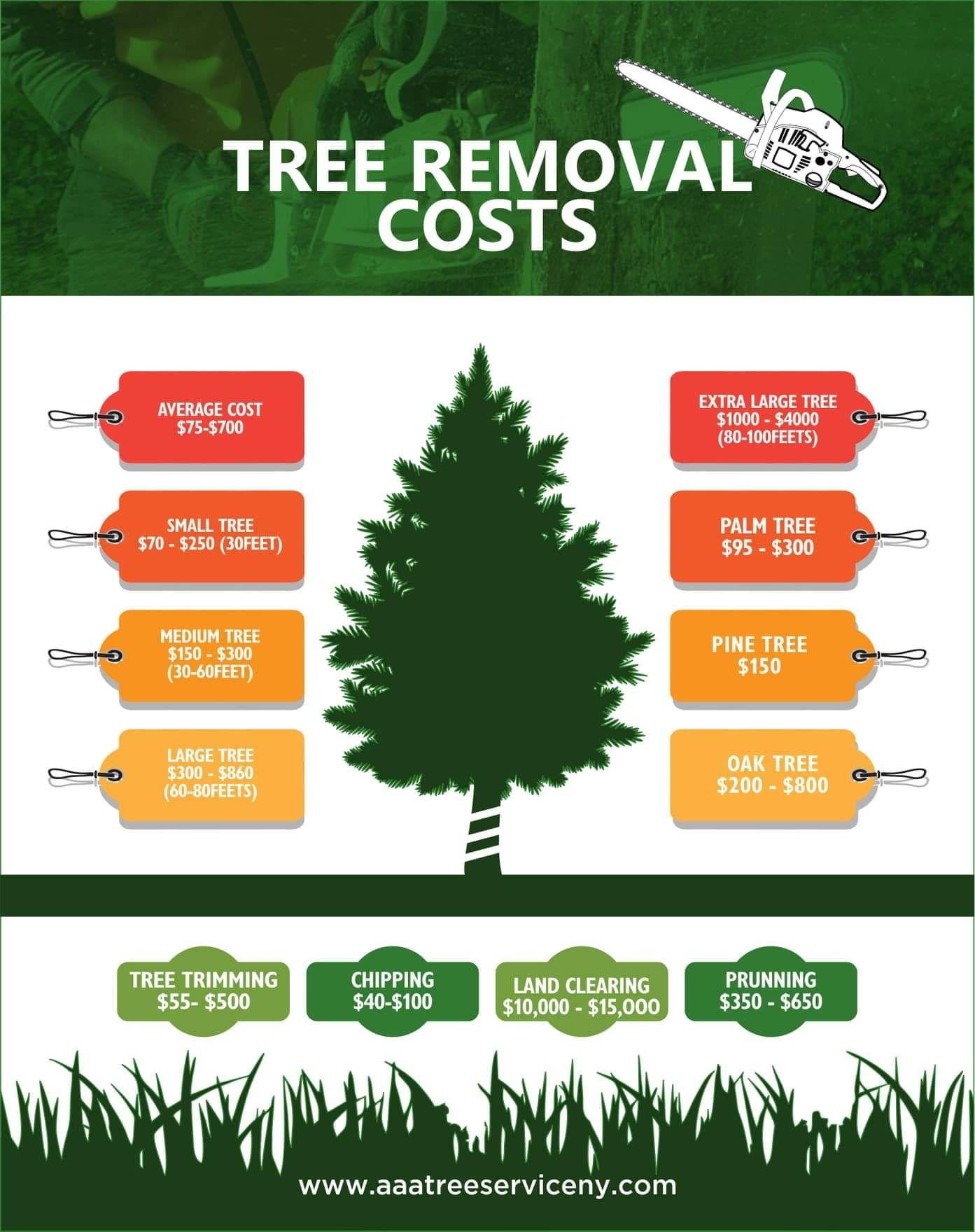 Pin on Tree cutting service