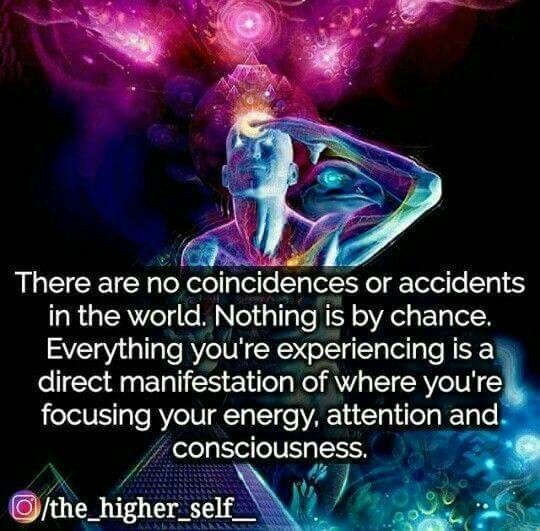 Life Is Your Individual Human Experienceconscious Fingerprint