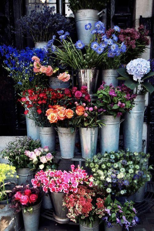 Aesthetic Sharer Zhr On Twitter Planting Flowers Flower Farm Beautiful Flowers