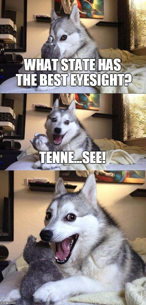 Get it gt it eye memes pinterest memes pun dog and worst puns get it gt it solutioingenieria Choice Image