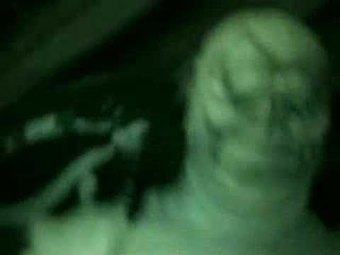 Alien abduction cellphone video .