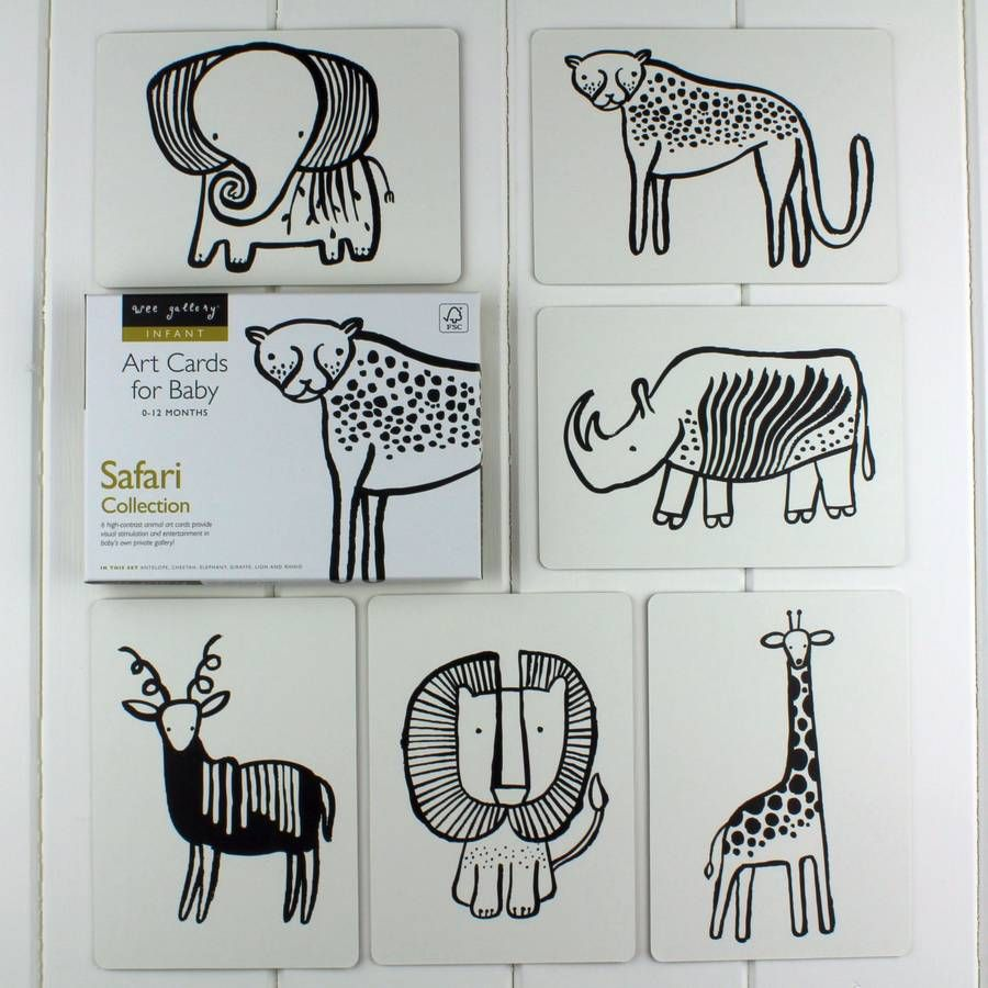 black and white baby flash cards safari animals by nest | notonthehighstreet.com