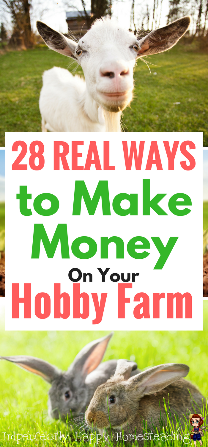 make money on your hobby farm or small homestead with these 28