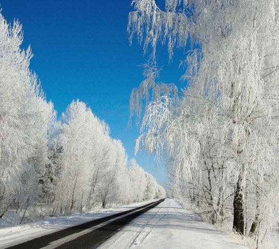 Winter Wonderland Images Of Stunning Snowy Landscapes Landscape Winter Landscape Winter Nature