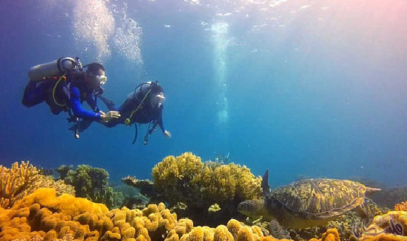 جزيرة نيجروس قبلة الباحثين عن الطبيعة الساحرة في الفلبين Visit Philippines Beautiful Places To Visit Tourist Spots