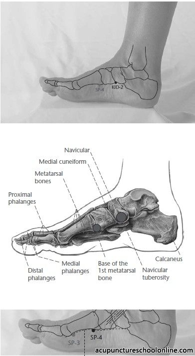 Acupressure - the Official Website for Acupressure Points ...