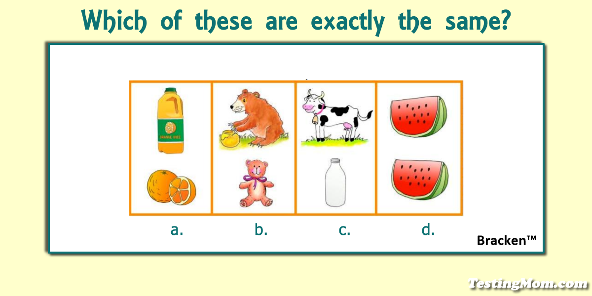 Ask your preschooler this question from the Bracken School Readiness Assessment... #BSRA