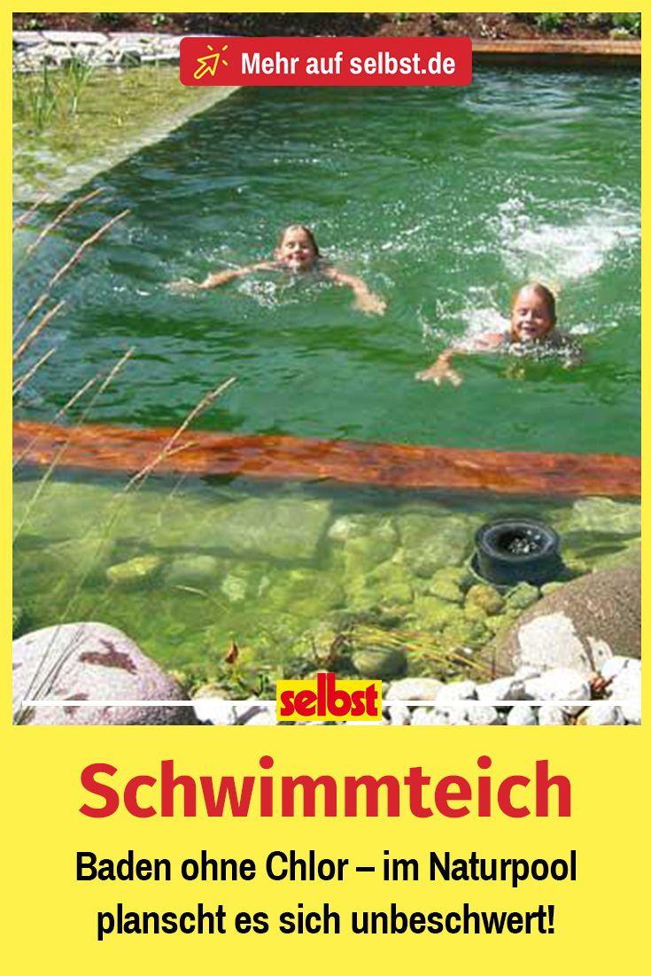 Schwimmteich | selbst.de