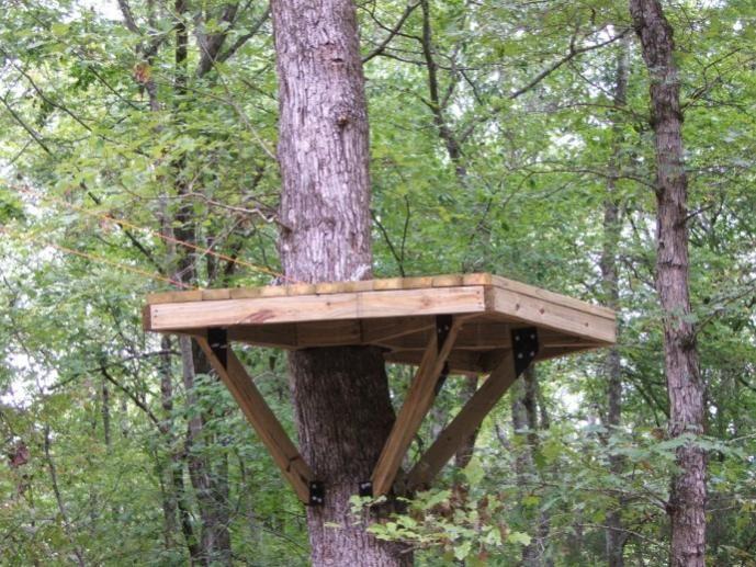 Stand Designs Zip : Platform for the zip line treehouse outdoor