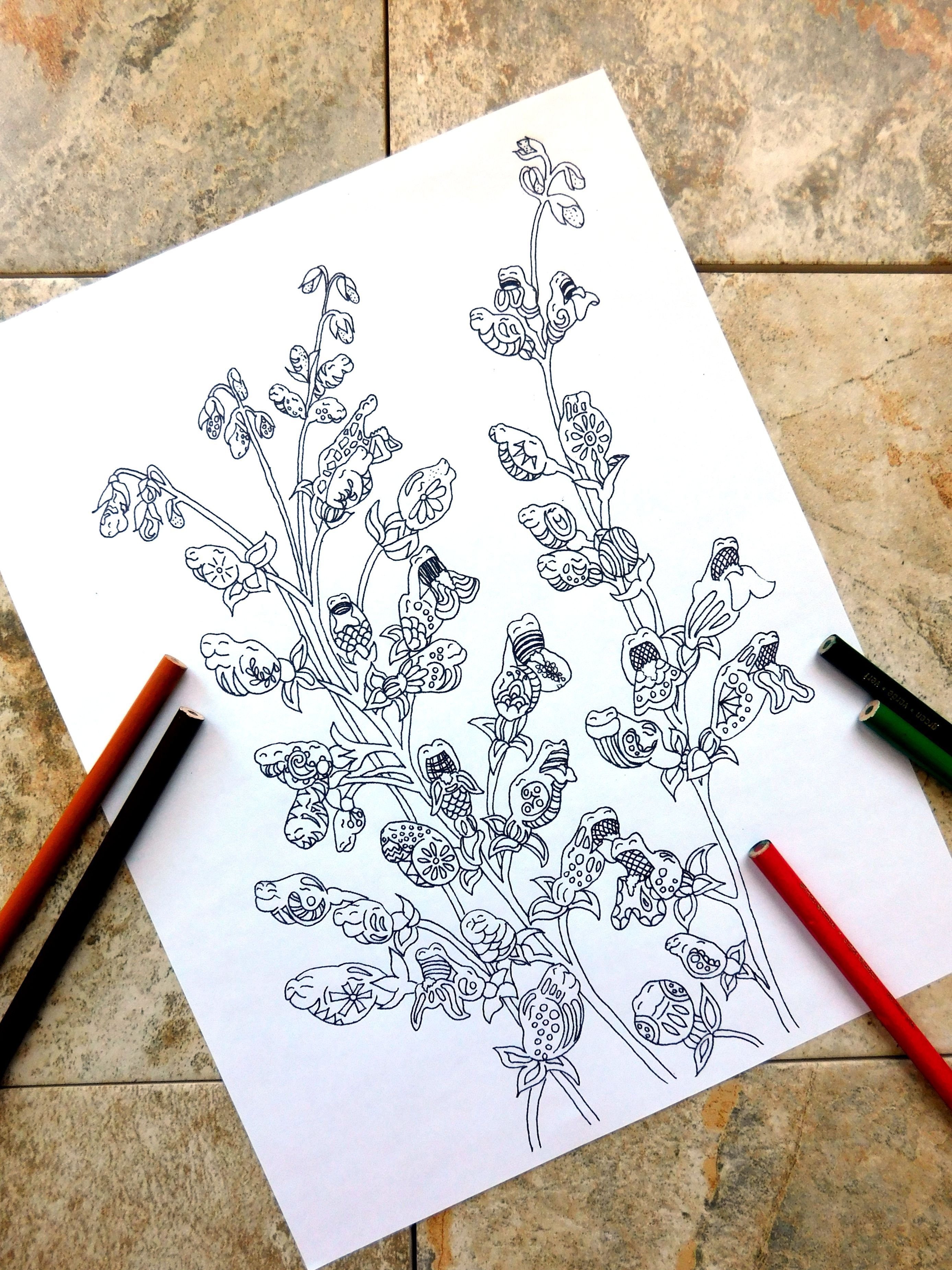 coloringpages Dragon coloring page flower flower coloring