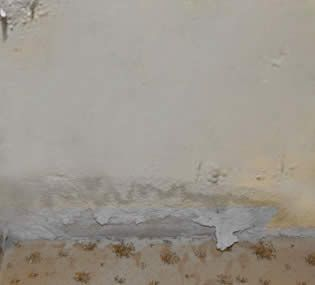 C mo quitar el moho de las paredes pasos para eliminar el for Como limpiar las paredes del bano