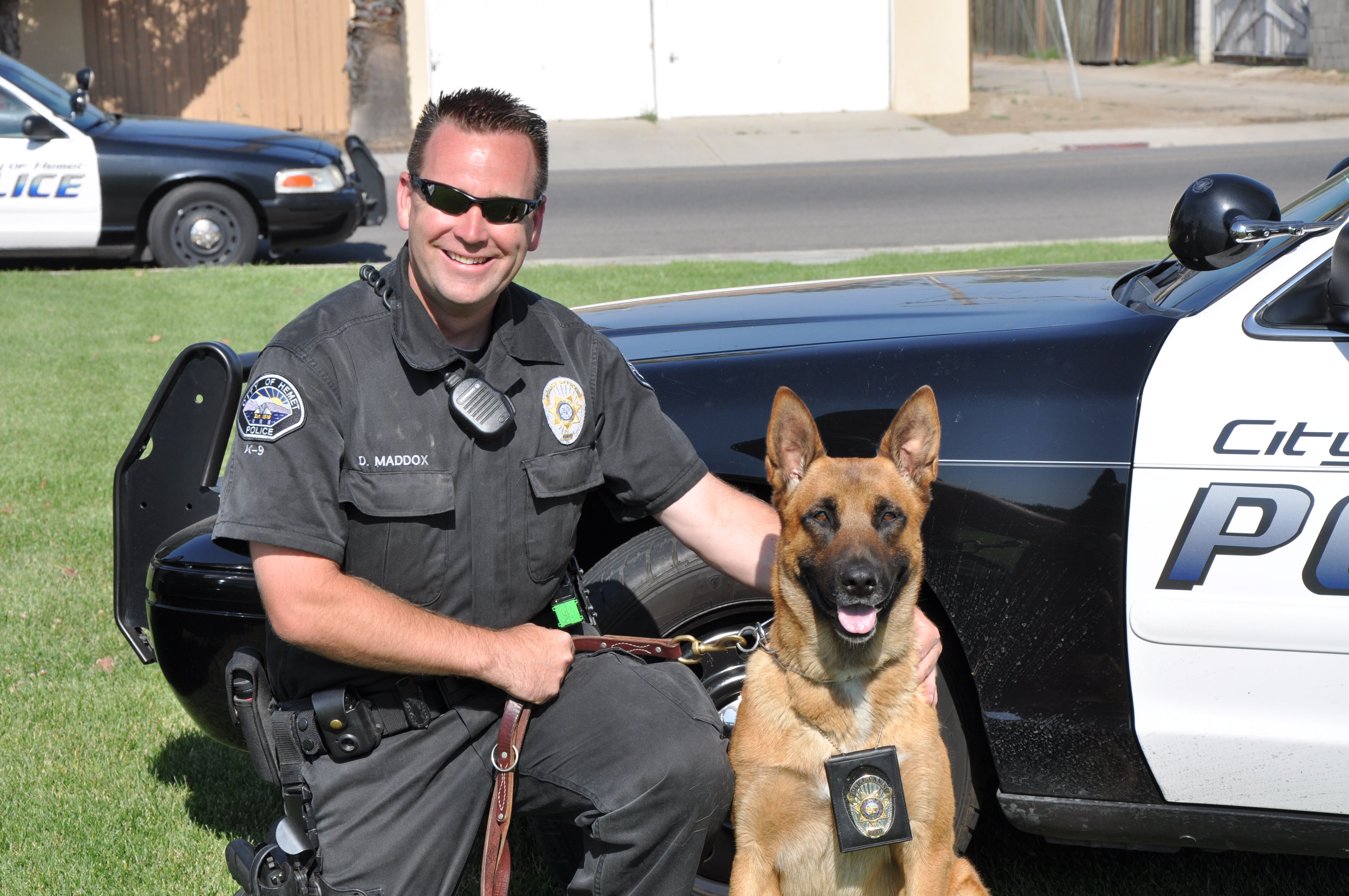 k9 police Find police k9 vests, military dog harnesses & training equipment at activedogscom - everything you need for training police & military dogs.