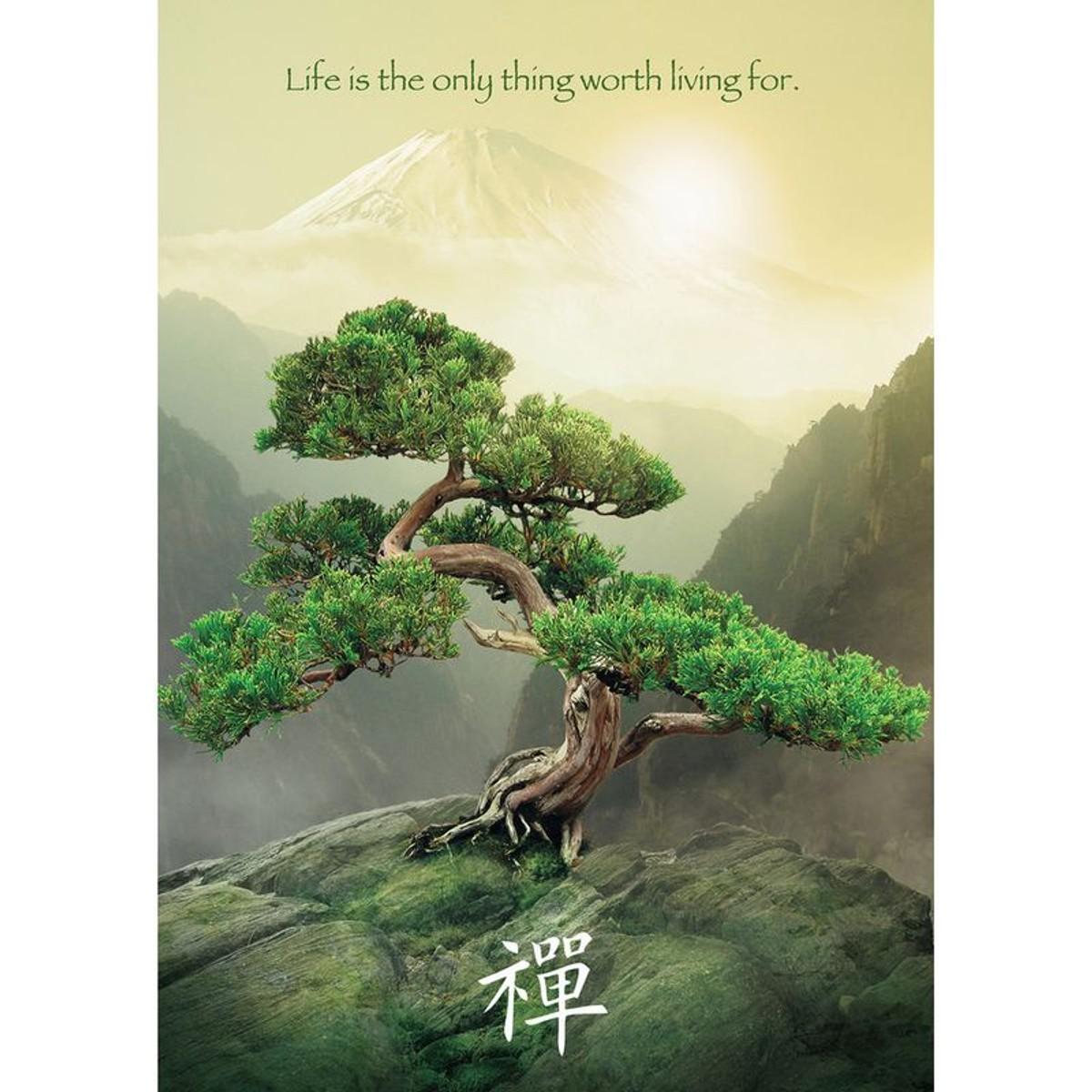 Puzzle 1000 Pièces L'arbre De Vie Taille Taille