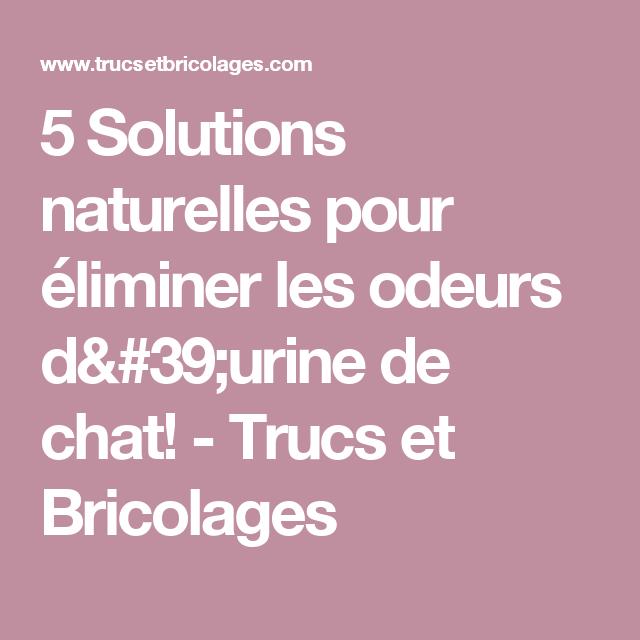 5 solutions naturelles pour liminer les odeurs d 39 urine de chat diy ideas. Black Bedroom Furniture Sets. Home Design Ideas