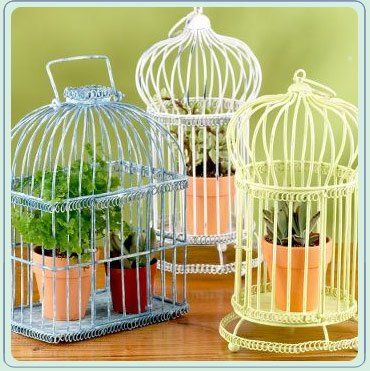 Decorating Addiction: Tweet Tweet... add a fresh coat of paint to a vintage birdcage! Love this idea!