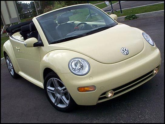 1000+ images about vw beetle on pinterest   volkswagen, retro
