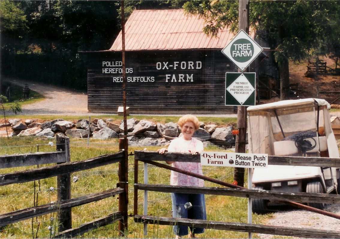 Ox-Ford Farm Bed & Breakfast Inn is part of an authentic working farm located on a slope off the Blue Ridge Parkway near Mount Mitchell in Western North Carolina. Beef cattle and pedigree sheep are raised here on steep mountain pastures with beautiful vistas all around.