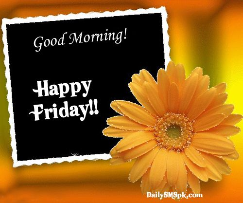 Happy Friday Comments: Happy Friday Quotes For Facebook