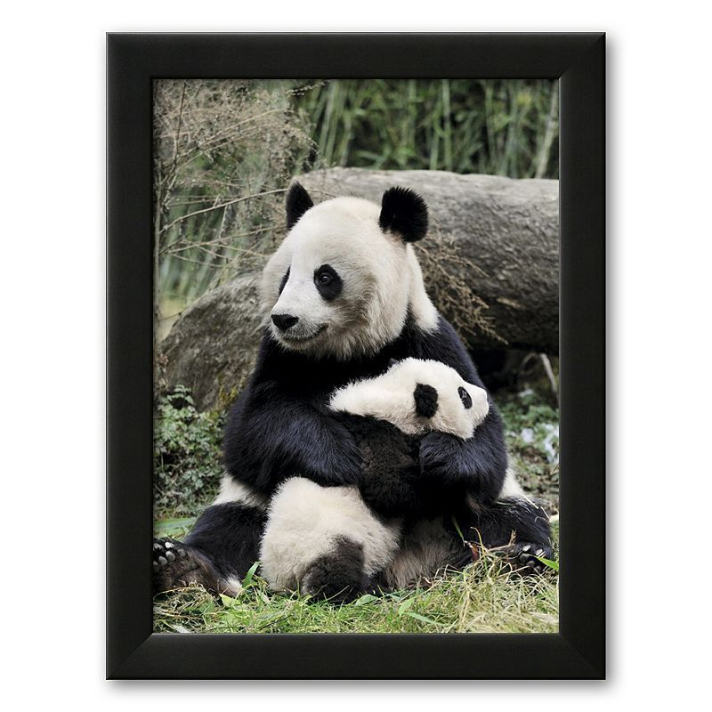Art.com Giant Panda, Mother and Baby Framed Art Print by Eric Baccega, Multicolor