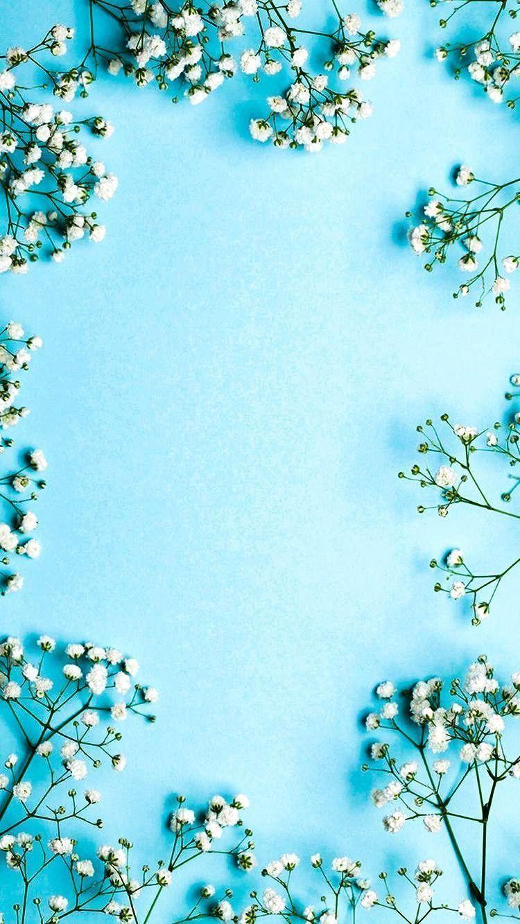 Photography Photo Blue Flowers Wallpaper Blue Flowers Photo Photography Wallpaper Papel De Parede Floral Papel De Parede Branco Wallpapers Paisagens