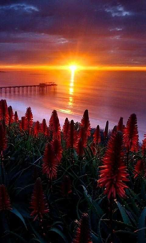 Foto Foto Pemandangan Alam Yang Spektakuler Dan Sangat Indah Fotografi Alam Matahari Terbit Lanskap