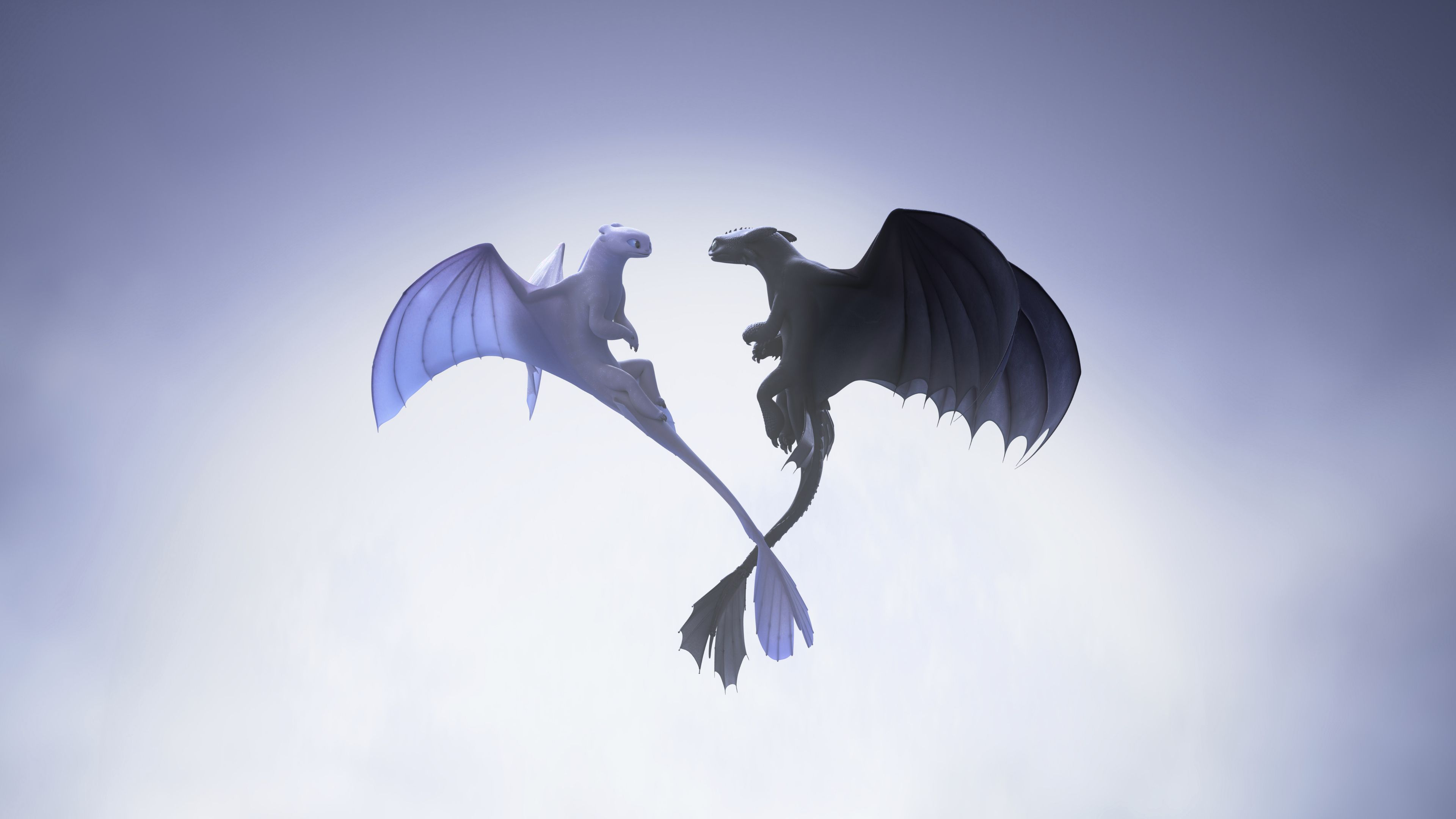 Night And Light Fury 4k Night Fury Wallpapers Movies Wallpapers Light Fury Wallpapers How To Train How To Train Your Dragon World Wallpaper Movie Wallpapers
