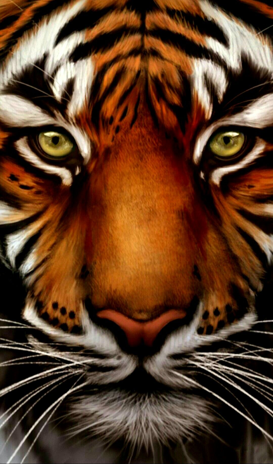 Popular Wallpaper Mobile Tiger - d3350fd7a8b5cbcabb828cf06e68b800  2018_101734.jpg