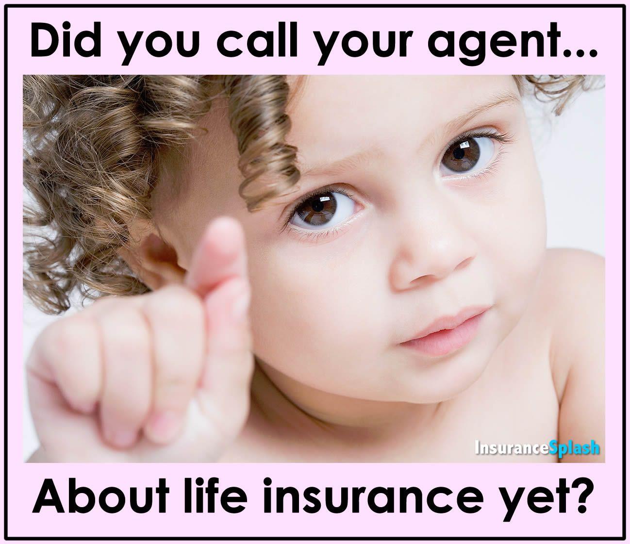 Good quesiton insurance marketing pet insurance reviews