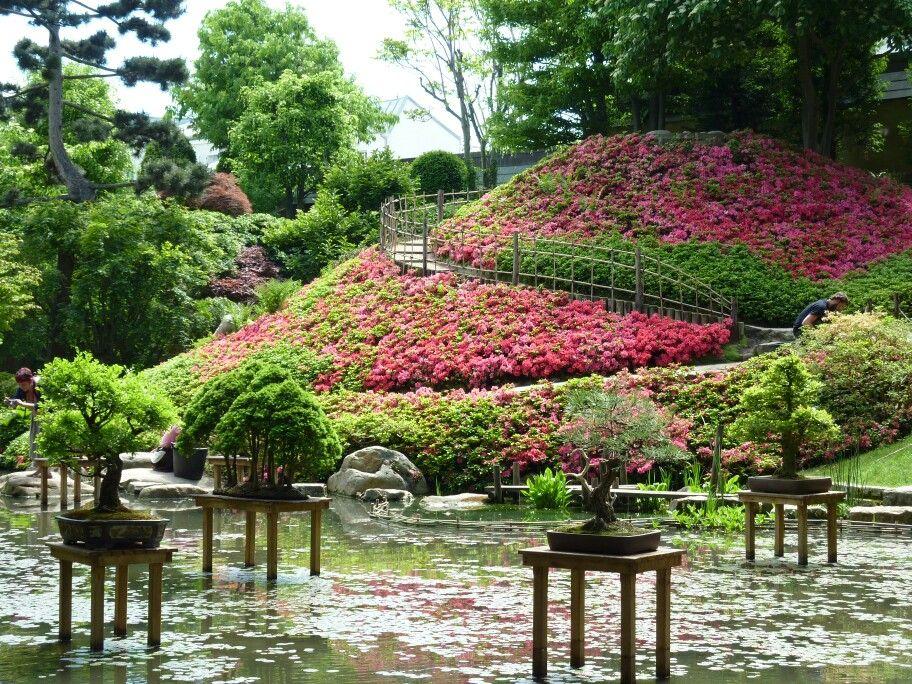 Jardin albert kahn le jardin japonais boulogne billancourt 92 parcs jardins du monde - Jardin d eveil boulogne billancourt ...