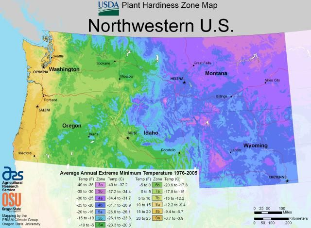 d3360b49a26edb004e8b81e83a263229 - What Gardening Zone Is North Idaho
