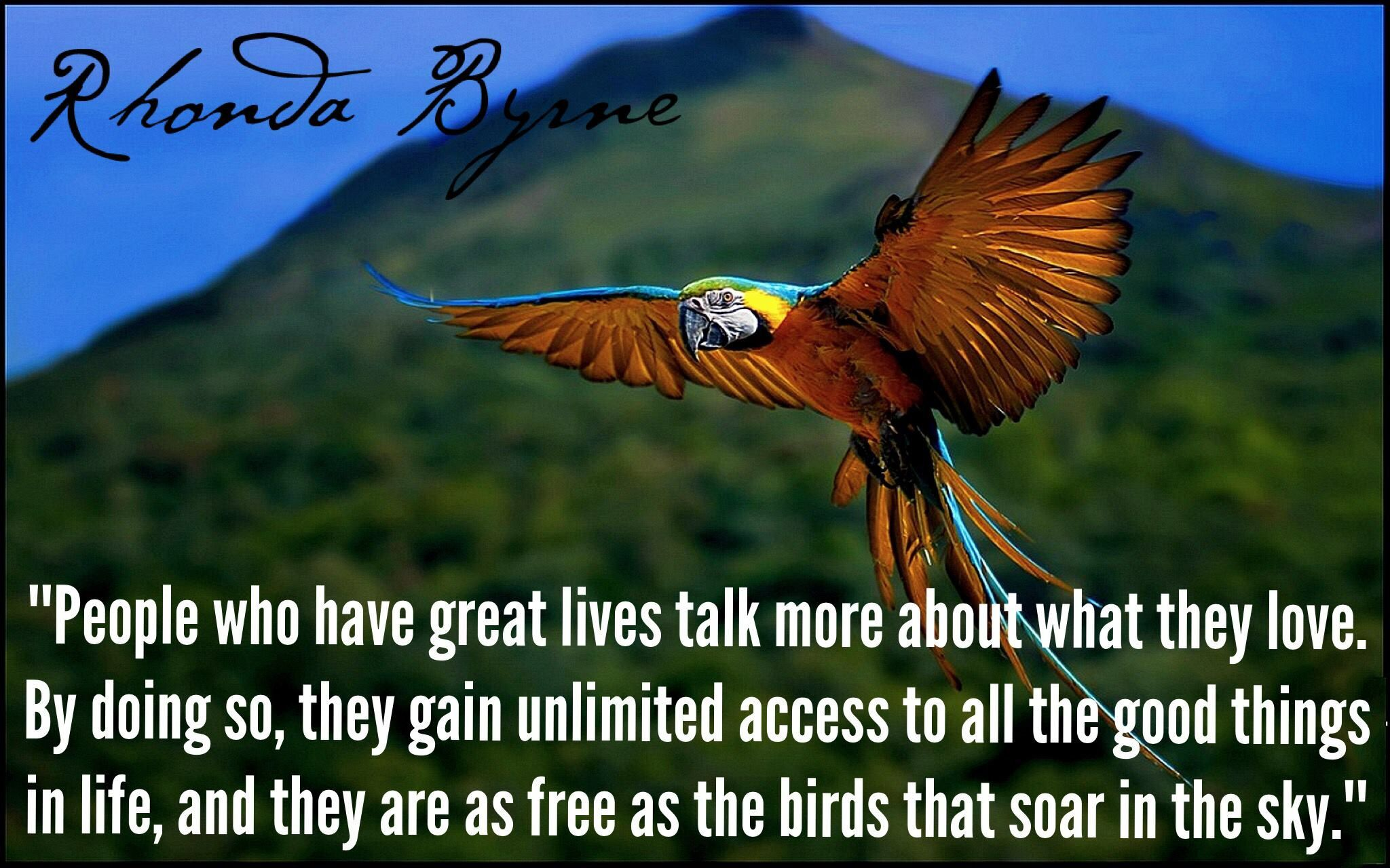 If You Parrot Negative Things And Squawk About The Things You Don T Love You Are Literally Jailing Yourself Like Great Life The Secret Book Series Pet Birds