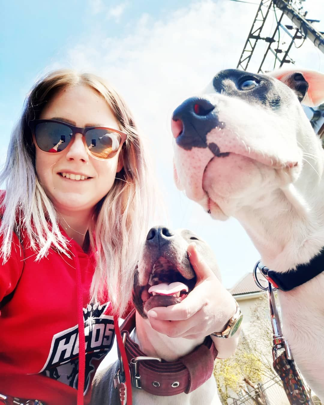 [New] The 10 Best Home Decor (with Pictures) -  mavisbrad #selfie #amstaff #staffords #amerikanstaffordshirenterrieri #lovedogs #loveamstaff #sun #sunday #nature #banskabystrica #slovakdog #slovakgirl #slovakia #slovakianature #sasova