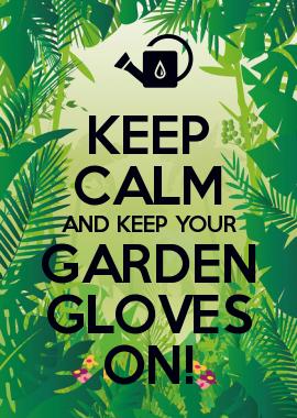 d33834807365b044173bfc888e42e037 - Keep Calm And Carry On Gardening Mug