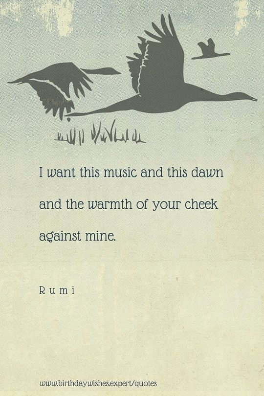 Rumi Quotes Rumi Quotes To Help You Enjoy Life  Rumi Quotes And Poem