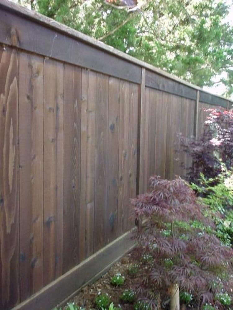 70 Simple Backyard Privacy Fence Ideas On A Budget Buildadeckonabudget