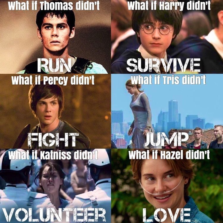 Why If Would Never By Heroes Fandom Quotes Book Fandoms Hunger Games