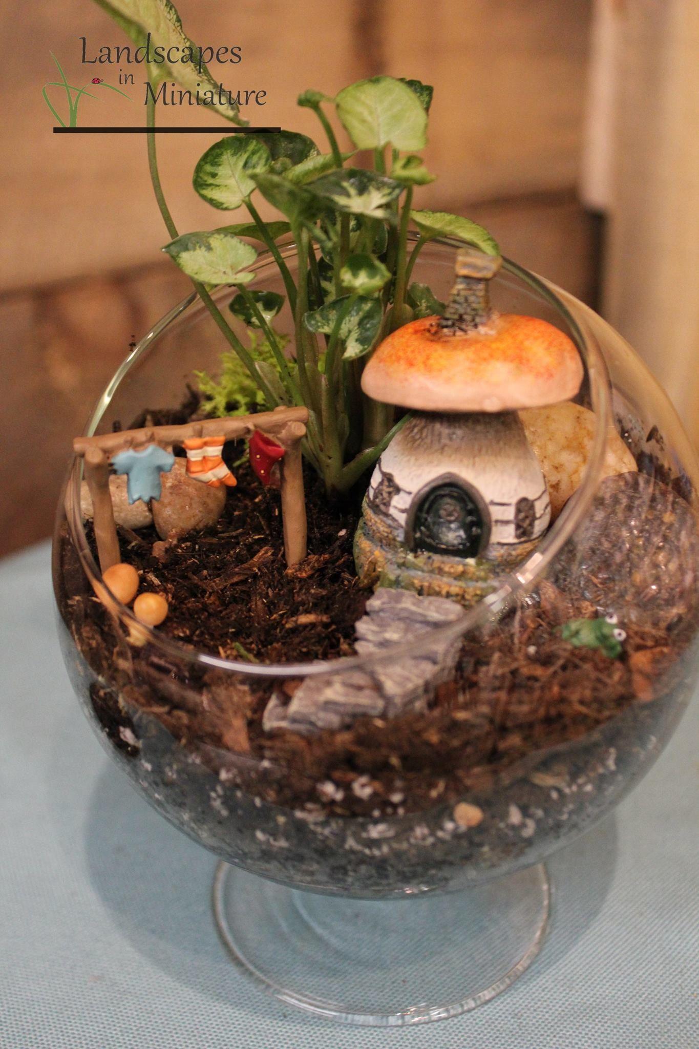 miniature fairy garden fairy gardens - Indoor Fairy Garden