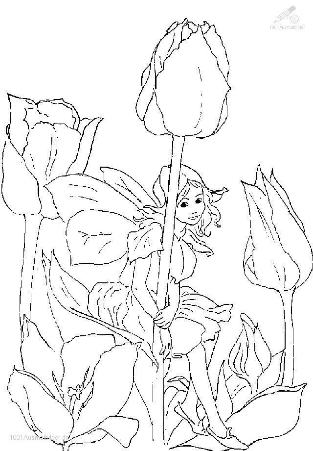 Pin von Barb Bates auf coloring 7 Lustige malvorlagen