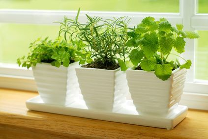 A #Windowsill #Herb #Garden is a Valuable Addition to Your Kitchen
