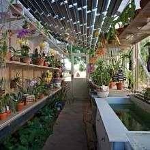 Cool Solar Greenhouse In The Desert Greenhouse Growing Home Interior And Landscaping Oversignezvosmurscom