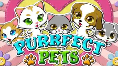 RTGs Purrfect Pet New Slot Released