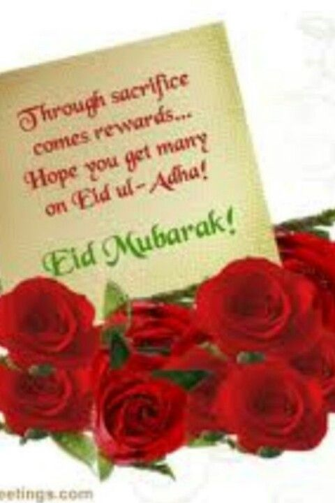 Eid Ul Adha Mubarak Eid Greetings Quotes Eid Greetings Happy